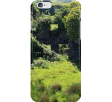 Birth Place Of The Liberator iPhone Case/Skin