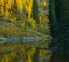 The Beatton River #2 by peaceofthenorth
