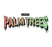 Flatbush Palm Trees - Logo Mashup! Photographic Print