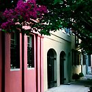 Rainbow Row No. 3, Charleston, SC by Benjamin Padgett