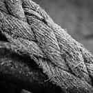 Rope by Stevie B