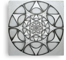matrix of earth Star  Canvas Print