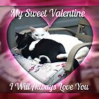 My Sweet Valentine, I Will Always Love You  by Jane Neill-Hancock