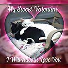 My Sweet Valentine, I Will Always Love You  by Jane Neill-Hancock
