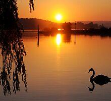 lake of serenity by mc27