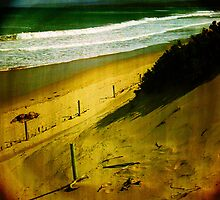 Toy camera - Anglesea by Mike Emmett