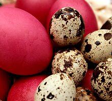 Egg Mix by mayapet