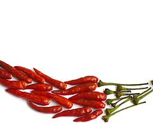 Chili Pepper Mosaic by travellingtwo
