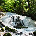 Waterfalls of the Pacific Northwest by goddessteri211