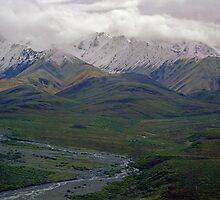 Denali View by EvaMcDermott