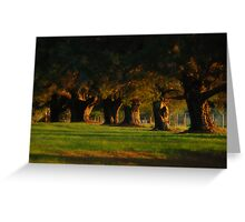 Before The Sun Sets Greeting Card