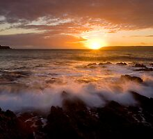 Gold rush, Titahi Bay, New Zealand by Ken Wright