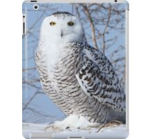 I only have eyes for you iPad Case/Skin