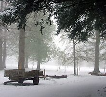 Arundel Park in the snow by Charlotte Jarvis