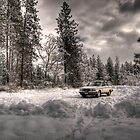 Volvo in the Snowstorm by Bailey Sampson