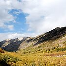 Lamoille Canyon, Nevada by JVBurnett
