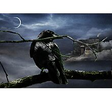 """Quoth The Raven, """"Nevermore"""" Photographic Print"""