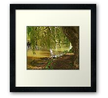 Underneath The Weeping Willow Framed Print