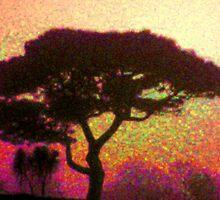 Fir Tree 2 by wysiwyg