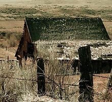 Old Barn by ogercaveman