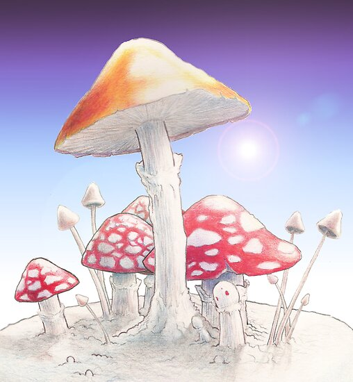 Mushrooms  by Robert Burton
