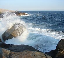 Waves Crashing at Peggy's Cove by Diane Petker