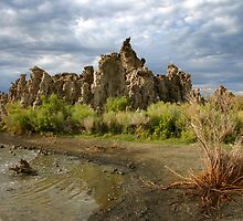 Tufas at Mono Lake by CarolM