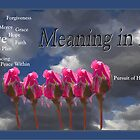Meaning in Life by Liz Wear