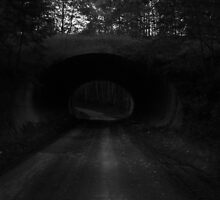 Tunnel #3 by WhiteRabbit13