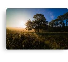 Early Autumn Sunrise Canvas Print