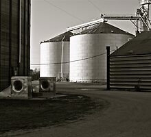 Newport, Arkansas by Wallace Lester