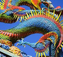 Water Dragon by Jeff Harris