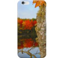 Beauty and the Birch iPhone Case/Skin