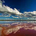 Pink Lake - near Dimboola by Victor Pugatschew