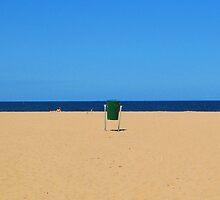 Bin on Avoca Beach by Cathi Norman
