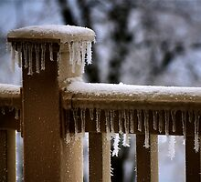 Frosty by Lois  Bryan