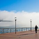 Sydney Harbour in a morning fog by Sheila  Smart