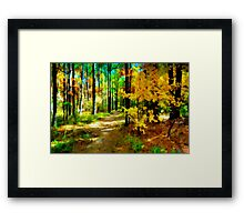 Deep In The Woods of Light & Color Framed Print