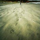 New Zealand, Golden Bay (2) by Karin Elizabeth