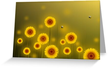 * sunflower field * by franzi