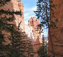 Scenic Ravine, Bryce Canyon National Park by Laurie Puglia