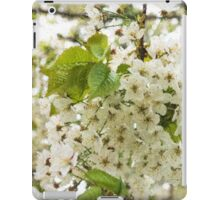 Dreamy White Blossoms - Impressions Of Spring iPad Case/Skin