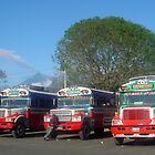 Colourful buses in Antigua, Guatemala by mojgan