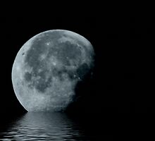 Moonscape Reflection by Winona Sharp