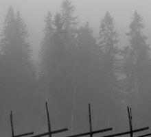 'February' by Petri Volanen