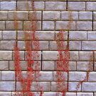 Bleeding Wall by murrstevens