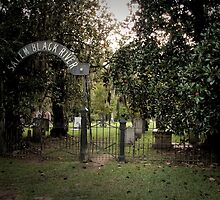 Salem Black River Cemetery Gate in Color by AlixCollins