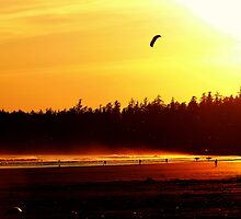 Amber Sunset At Long Beach by Gail Bridger