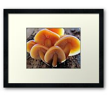 There's Always Room For One More Framed Print