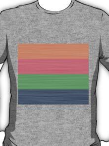 Brush Stroke Stripes: Peach, Rose, Spring Green and Steel Blue T-Shirt